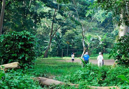 nicaragua-naturaleza.jpg