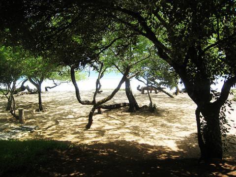 nicaragua-playas-turismo.jpg