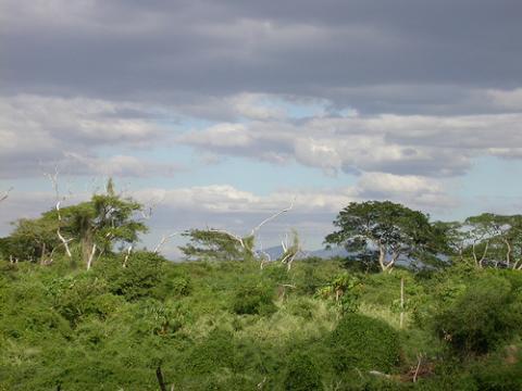 nicaragua-viaje.jpg