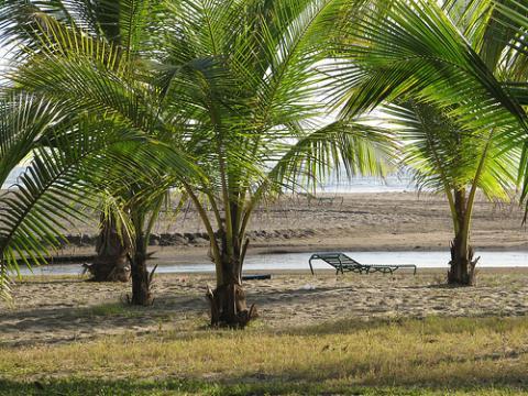 naturaleza-nicaragua.jpg